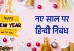 नए साल पर हिन्दी निबंध | Essay on happy New Year in Hindi