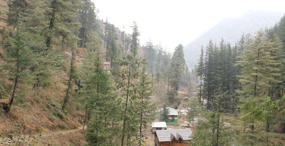 Shoja Is Best Tourist Place Of Himachal Pradesh