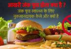 जंक फूड स्वास्थ्य के लिए नुकसानदायक कैसे और क्यों है | harmful effects of eating junk food in hindi