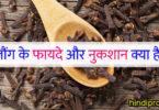 लौंग के फायदे और नुकशान क्या है ? laung ke fayde aur nuksan in hindi