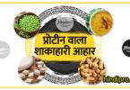 प्रोटीन वाला शाकाहारी आहार - vegetarian protein foods for-health in hindi