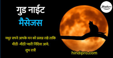 Top 1000+ Good Night SMS , Messages, wishes in hindi - गुड नाईट मैसेजस